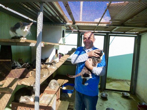 Im Tierheim in Tiflis setzt sich die Wettelsheimerin Barbara Engelhardt für eine bessere Unterbringung der Hunde und Katzen ein.