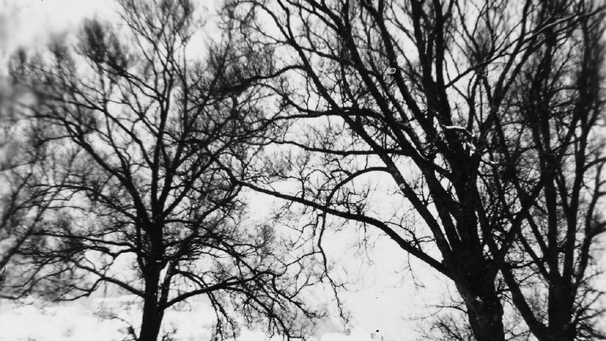 Auf diesem Foto rollt ein Pferdefuhrwerk über eine heute nicht mehr vorhandene Brücke. Diese führte in den 1940er Jahren über den Möhrenbach unweit von Heusteige und Sägmühle. Später wurden die Steinbögen durch eine Behelfskonstruktion aus Holz, Stahl und Beton ersetzt. Ob die Steinbrücke zerstört wurde oder baufällig war, wissen wir nicht. Sehr wahrscheinlich ist, dass sie in den letzten Tagen des Zweiten Weltkriegs gesprengt wurde.