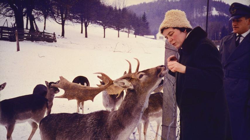 Hirsche füttern im Schnee - der Kleidung nach zu urteilen in den 1970er oder frühen 1980er Jahren.