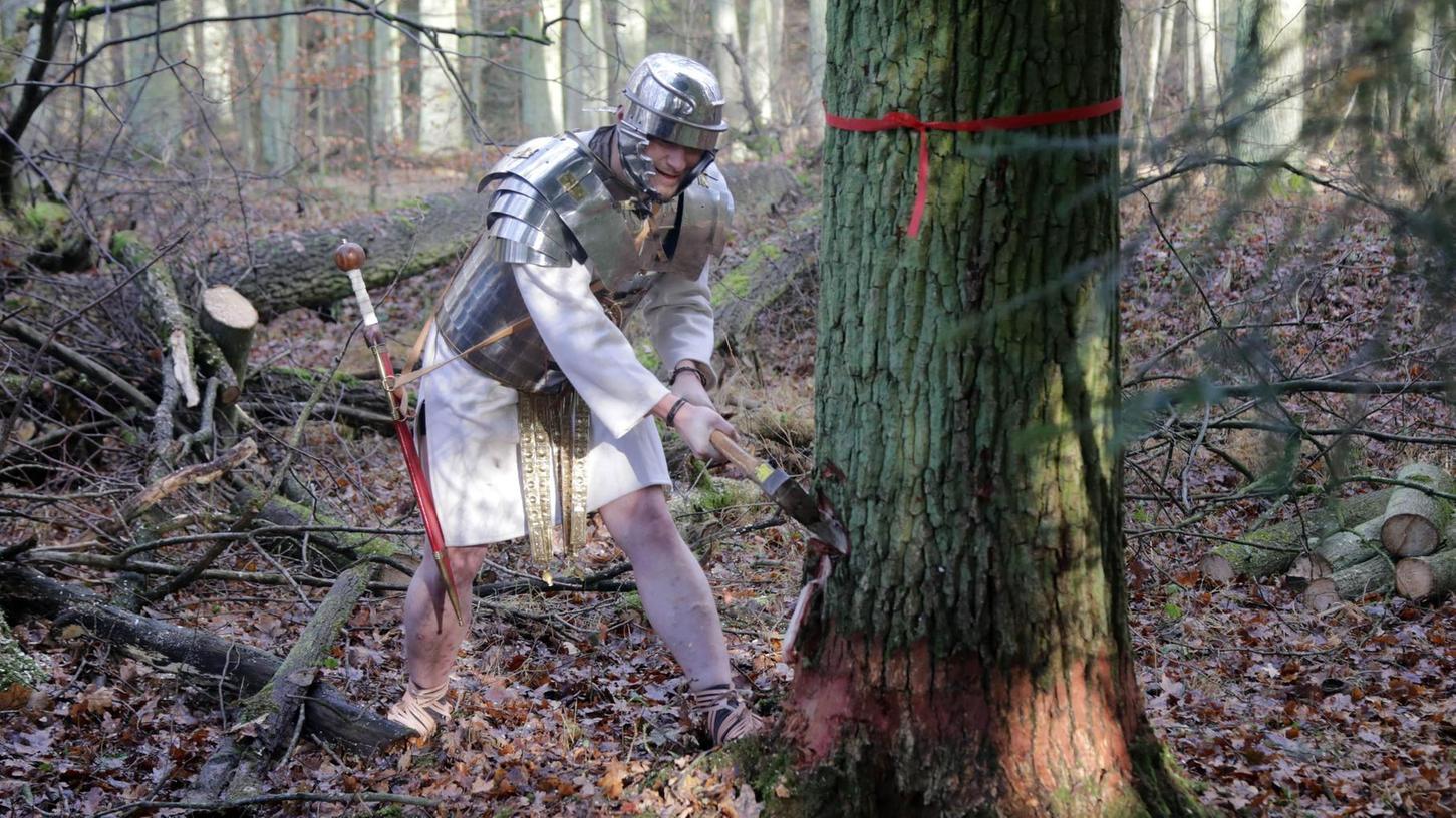 Mit Brustpanzer, Helm und Schwert ausgestattet schlägt Teilzeitrömer Thomas Albert auf die Eiche im Sebalder Reichswald ein. Aus ihrem Stamm entsteht später der Kiel. Das harte Holz ist besonders beständig unter Wasser.