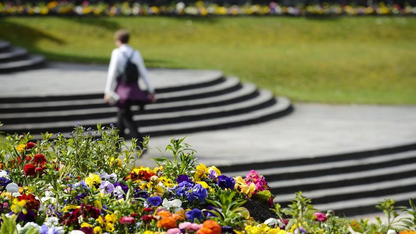 Das wissen viele nicht: Wer im Park Blumen pflückt, verstößt in Nürnberg gegen die Grünanlagensatzung. Das kostet laut Ordnungsamt 25 bis 50 Euro. In Naturschutzgebieten wird das Ausreißen von Pflanzen mit mindestens 50 Euro geahndet.
