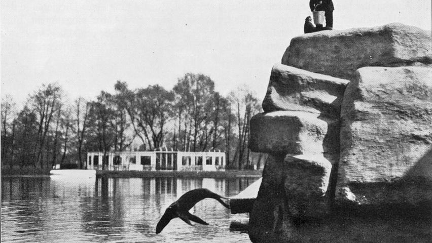 Der Erste Weltkrieg traf den Tierbestand hart. Passendes Futter war schwer zu bekommen, trotz Spenden der Nürnberger, die ihren Tiergarten in beträchtlichem Umfang unterstützten. Die Seelöwen und Pinguine gingen als erstes ein, nachdem statt frischem Fisch nur noch Trockennahrung zur Verfügung stand.