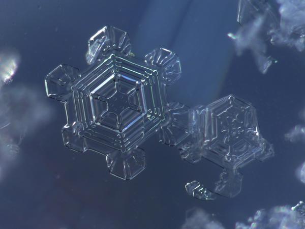 Sternförmige Plättchenkristalle mit reichem Relief; es sind Aufnahmen mit der Kamera am Mikroskop.