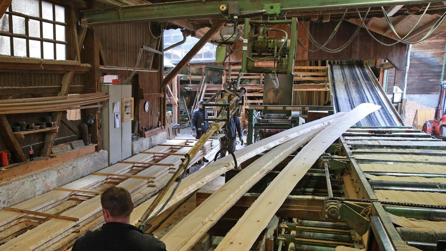 Aus einer 28 Meter langen Eiche wird der Kiel, das Rückgrat des Schiffs. 20 Kiefern werden zu Spanten und Planken, dem Gerippe und der Außenhülle. Für den neun Meter hohen Mast und die Ruder wurde eine Tanne gefällt.
