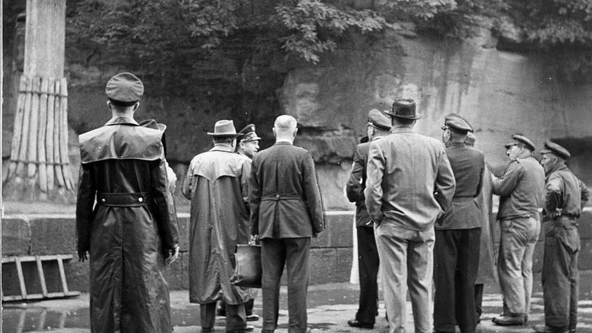 Der Tiergarten hat allerdings auch dunkle Geschichts-Kapitel: Im Juli 1954 beging Joseph Hajek Selbstmord - er wurde im Löwengehege im Nürnberger Tiergarten gefunden.