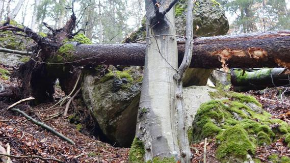 Felsbrocken bei Rupprechtstegen soll entfernt werden