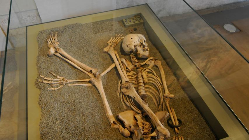 """Eines der beliebtesten Ausstellungsstücke im Museum könnte tatsächlich der Tod von Forchheim sein, aber nein, das Skelett stammt vom Walberla. Bei der getöteten Frau handelt es sich um ein Bauopfer. Auf dem Walberla befand sich vom 6. bis 4. Jahrhundert v. Chr. eine keltische, stadtähnliche Anlage. Trotz ihrer hochentwickelten Kultur brachten die """"Verwandten von Asterix"""" Menschenopfer dar, um die Götter zu besänftigen."""