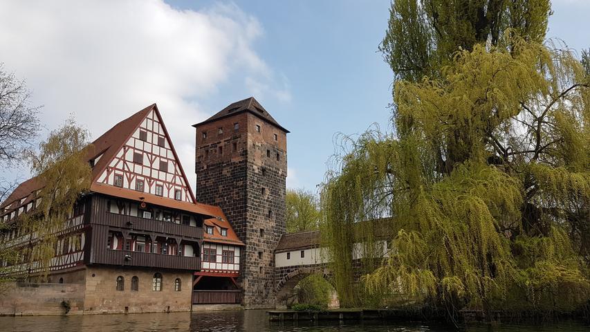 Ungewohnte Perspektive: So schön ist Nürnberg von der Pegnitz aus
