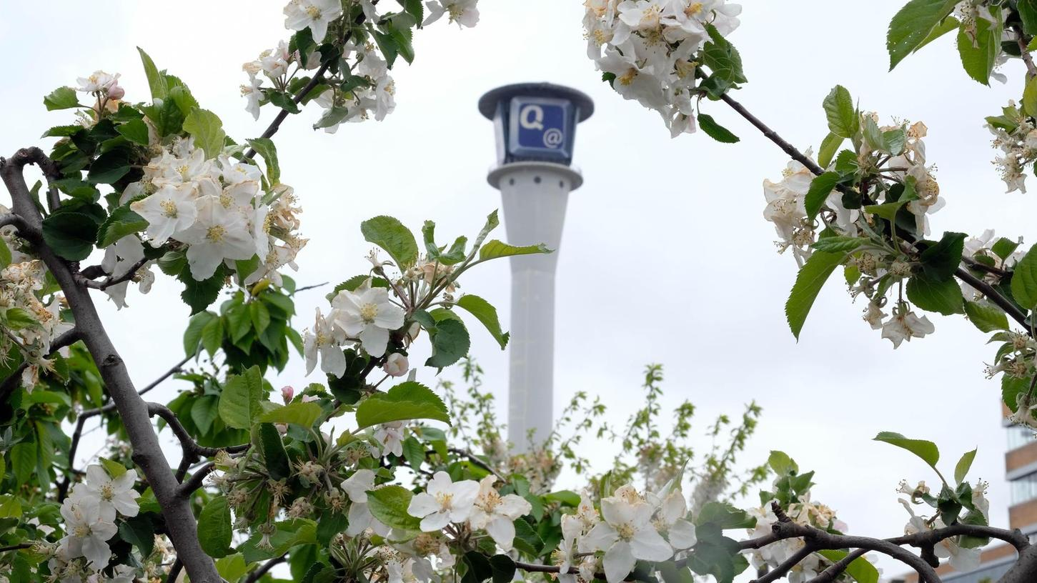 Im Schatten des Quelle-Turms: Der Stadtgarten ist seit 2012 in Eberhardshof auf dem ehemaligen Quelle-Areal beheimatet und hat bereits auf dem Gelände einen Umzug gemeistert. Nun kann es sein, dass sich die Hobbygärtner von dem geliebten Stadtteil verabschieden müssen.
