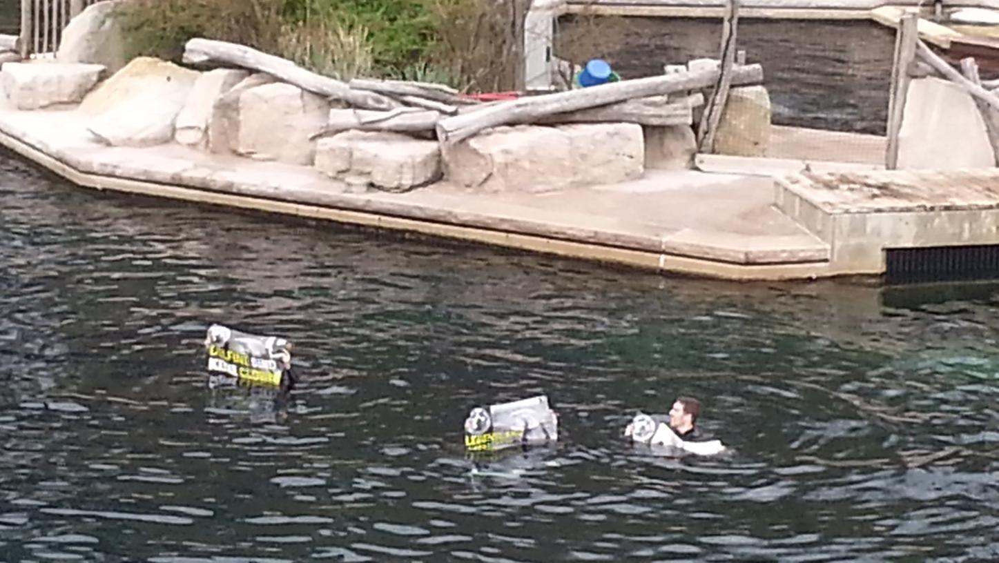 Die Aktivisten sprangen auch ins Wasser der Delfinlagune.