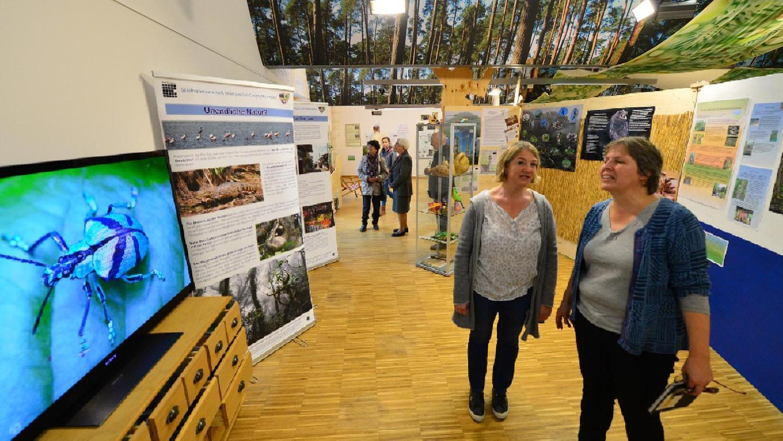 Die beiden Diplom-Biologinnen Susanne Scheer (r.) und Katharina Fittkau in der Regenwald-Ausstellung im Tennenloher Walderlebniszentrum.