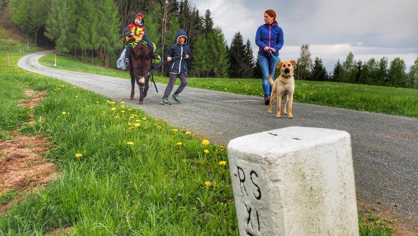 Mit dem Esel durch die Steiermark