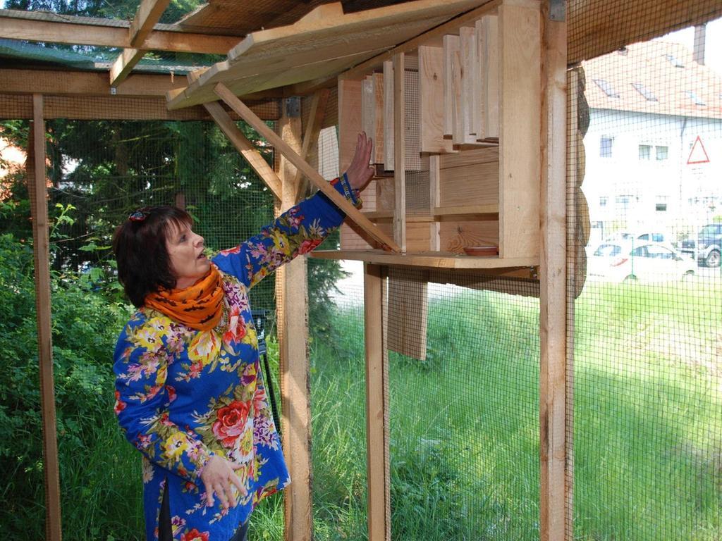 In Burgfarrnbach steht eine neue Fledermausauffang- und pflegestation. Biologin Bettina Cordes von der Koordinierungsstelle Fledermausschutz stellte den Unterschlupf für verletzte Tiere vor.