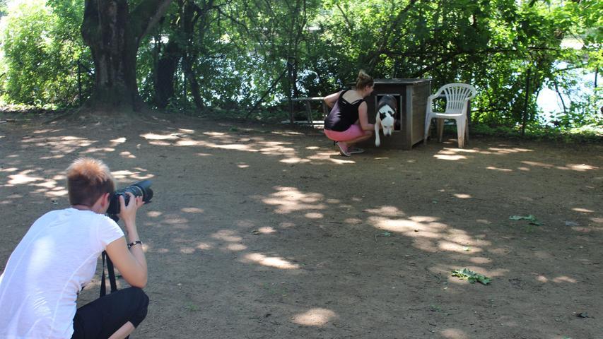 Fotoshooting Hunde im Tierheim Forchheim..Foto: Nina Eichenmüller