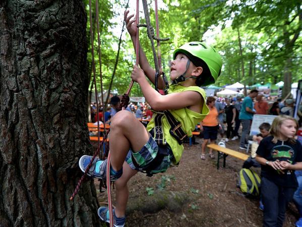 DATUM: 17.07.2016..RESSORT: Lokales ..FOTO: Horst Linke .. MOTIV: Reichswaldfest 2016..Oskar prusikt sich den Baum hoch (eben mit Hilfe zweier Prusikschlingen...)..