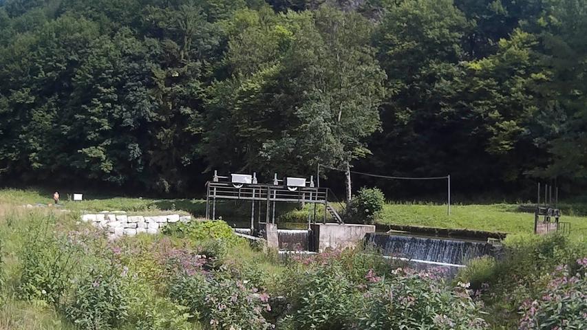Motiv_Wiesent Fränkische Schweiz Doos.Kajak-Fahrt von der Pulvermühle bis Doos.Foto: Kosima Rothmund.11.07.2017