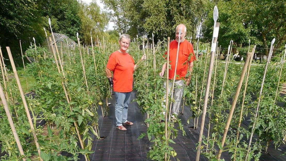 Andrea und Werner Illini in ihrem Garten in Wassermungenau: Hier wachsen 540 Tomaten-Sorten. Die wollen die Illinis für die Nachwelt erhalten.