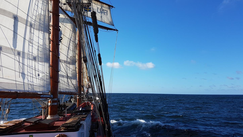 30 Wissenschafttler der Uni Erlangen-Nürnberg waren erstmals gemeinsam auf einem Schiff in der Ostsee unterwegs - ein Projekt mit Hintergedanken.