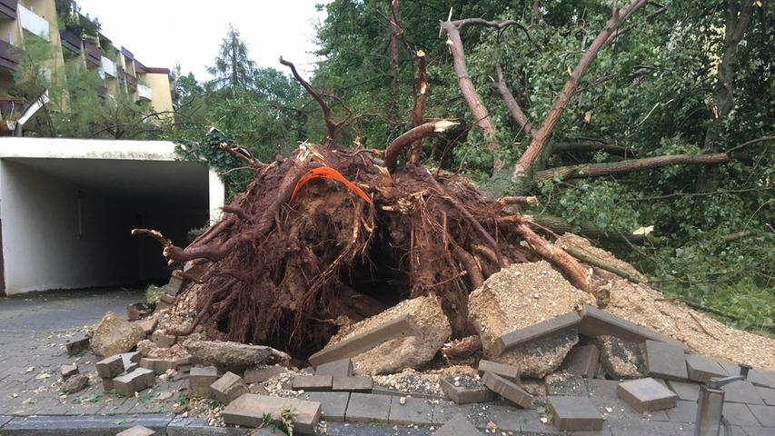 In der Geißäckerstraße in Fürth wurden ganze Bäume entwurzelt.