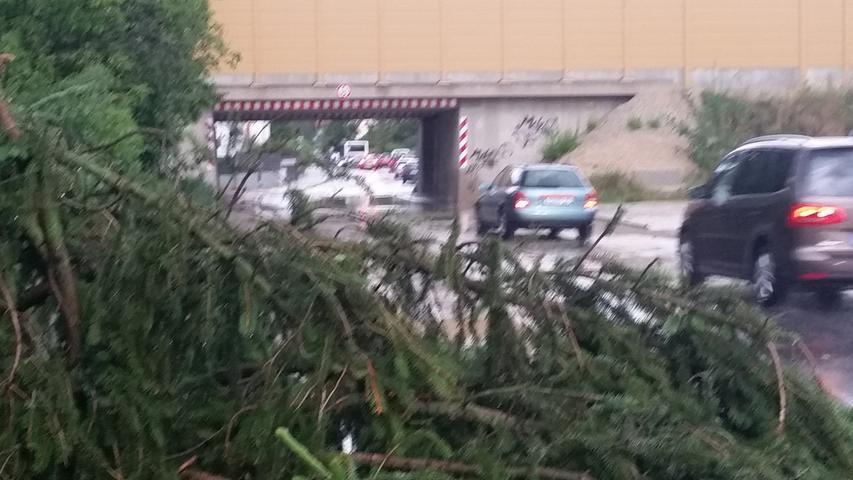 Die entwurzelten Bäume blockierten in der ganzen Region zahlreiche Straßen und Gleise.