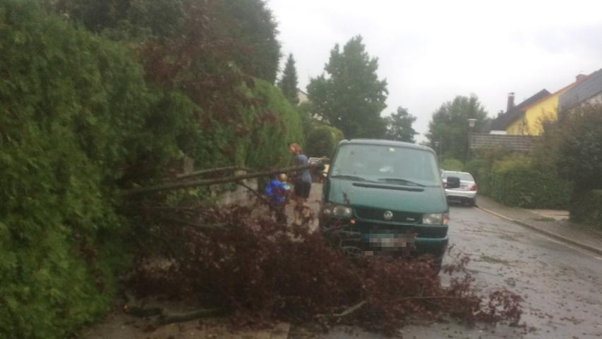 Umgestürzter Baum in Heroldsberg