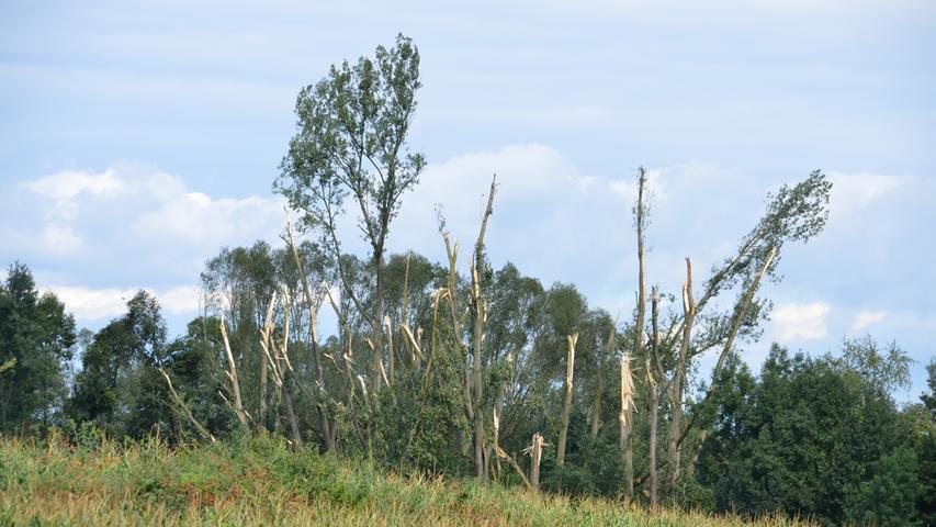 Schwere Schäden: So wütete der Sturm am 18. August in und um Fürth