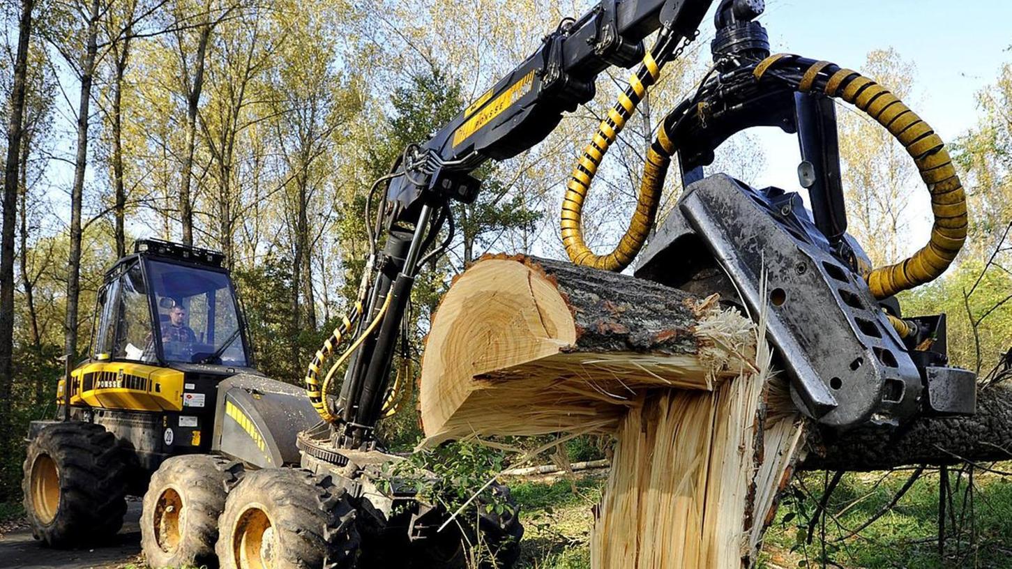 Bei den Bayerischen Staatsforsten, aber auch in den meisten großen Privatwäldern, wird Holz mittlerweile mit großen Maschinen, den Harvestern, geerntet