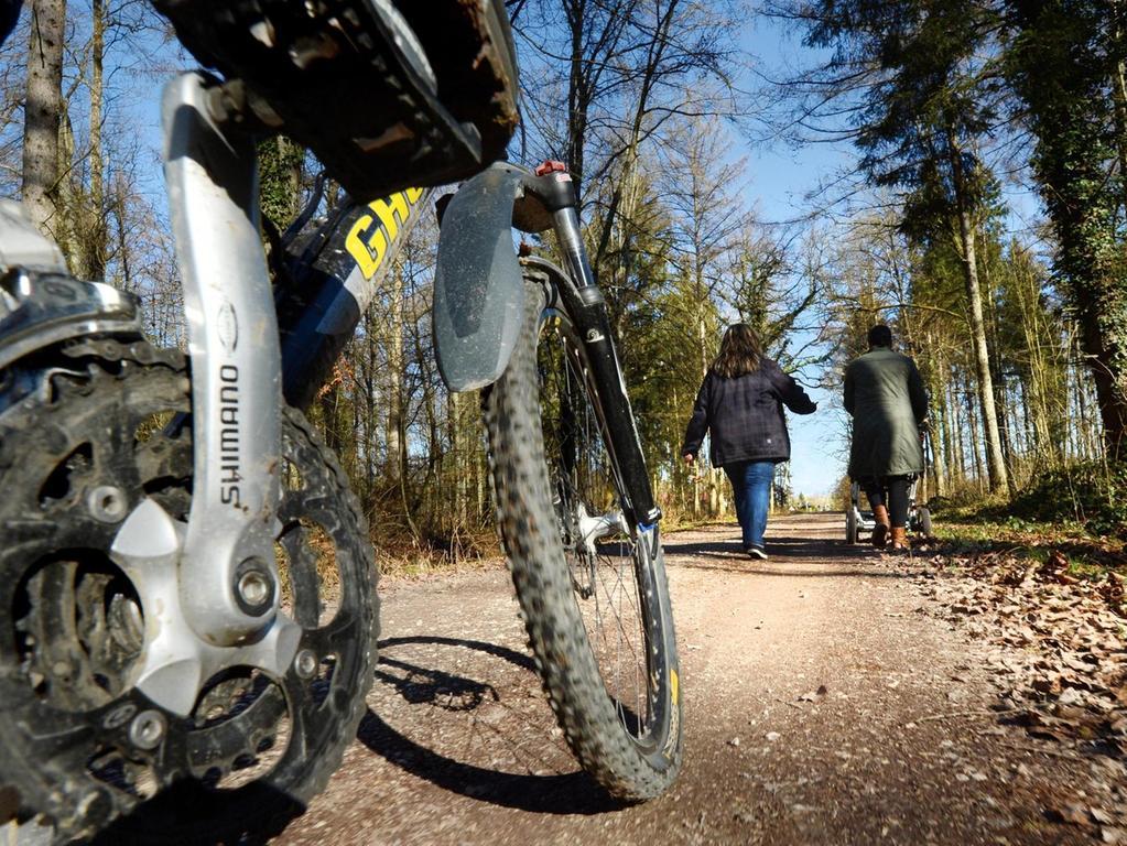 Auf ebenen Forststraßen entlangzurollen, genügt nicht jedem ambitionierten Mountainbiker.