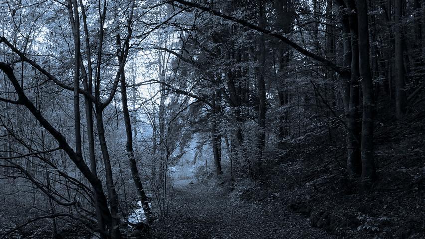 Viele Sagen und Legenden ranken sich um Egloffstein in der Fränkischen Schweiz. So soll es im Todtsfeldstal zum Beispiel spuken. Als ein Mann, so die Sage, dort spazieren ging, hörte er plötzlich neben sich einen kräftigen Nieser.