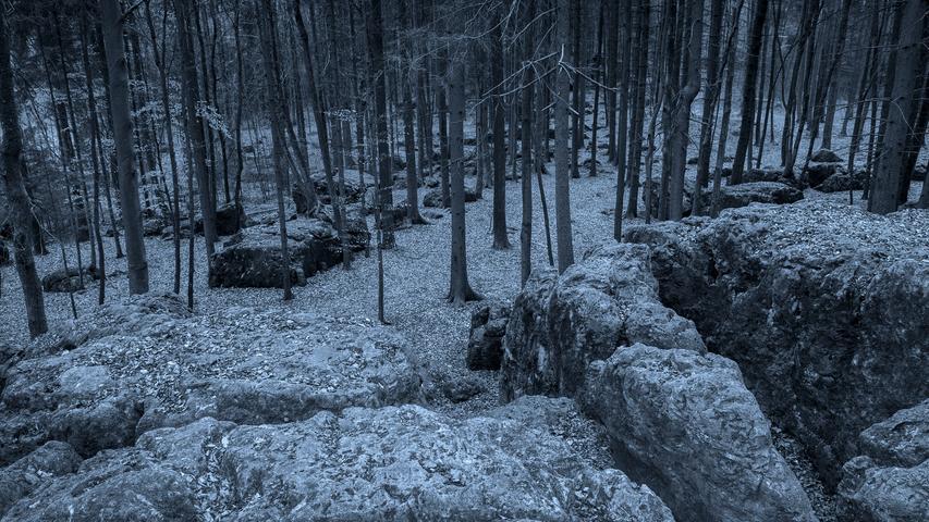 Seinen Namen erhielt das Waldgebiet in der Fränkischen Schweiz aufgrund der ungewöhnlichen Felslandschaft, die die Phantasie der Besucher anregte. Dem Volksglauben nach soll es sich um eine Kultstätte keltischer Priester, sprich Druiden, gehandelt haben. Darüber hinaus sollen dort der Raubritter Eppelein von Gailingen und seine Bundesgenossen  zu mitternächtlicher Stunde einen Treueschwur zelebriert haben. Und die Leute aus dem nahegelegenen Wohlmannsgesees glaubten an ein Bankett der Hexen mit Kinderfleisch und Menschenblut. Deshalb munkelt man, dass es dort in der Nacht nicht ganz geheuer sei.