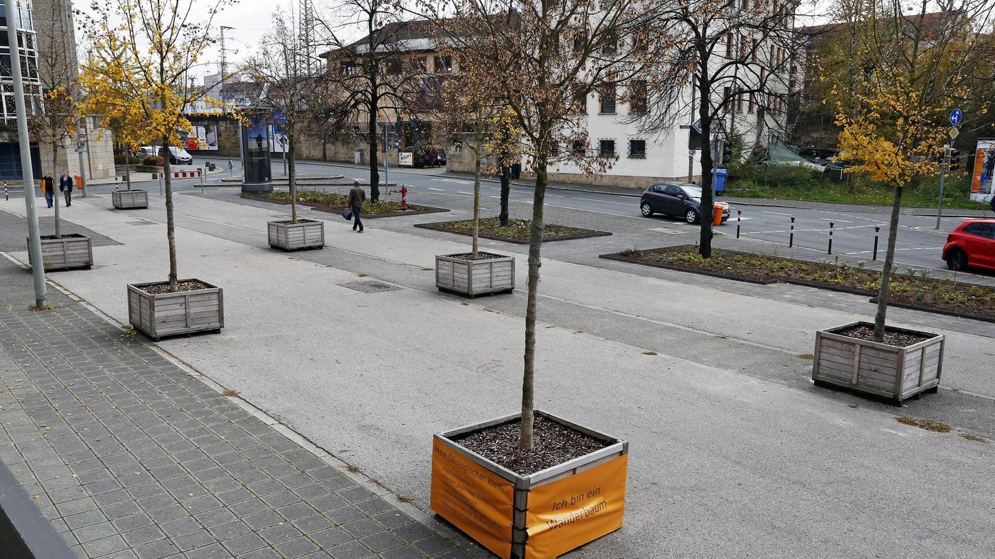 Die mobilen Wanderbäume (hier vor den Kammerspielen) sorgen nicht bei allen Nürnbergern für Freude.