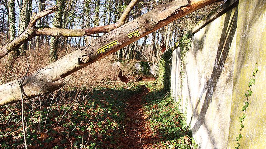 Umgestürzte Bäume liegen inzwischen auf den Außenmauern des Anwesens und zum Teil auch auf Dachflächen der Wirtschaftsgebäude.