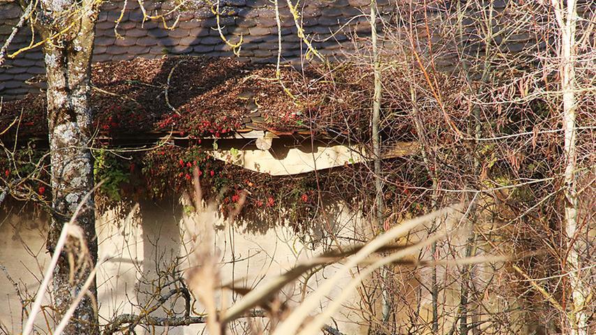 """Derweil geht es weiter bergab mit dem Schloss. Das Bayerische Landesamt für Denkmal spricht von """"zunehmender Verwahrlosung"""""""