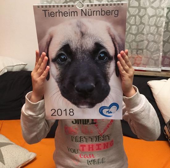 Tierheimkalender 2018