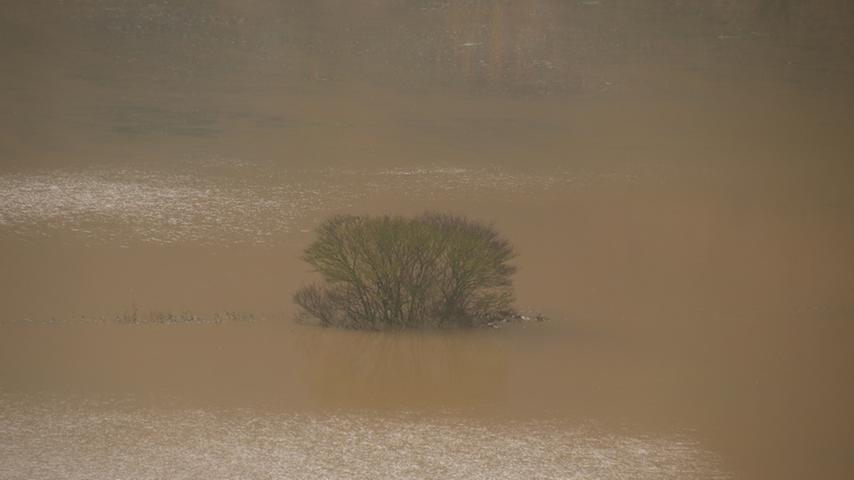 Das Hochwasser hat auch seine reizvollen Seiten. Die Altmühl schaut ein bisschen aus wie eine Mischung aus Sambesi und Amazonas.