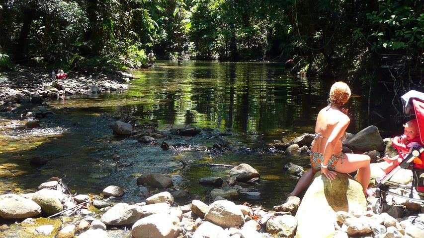 In der Nähe des Daintree-River liegen auch Wassertümpel wie dieser mitten im Dschungel - hier kann man prima Baden, Krokodile gibt´s hier nicht.