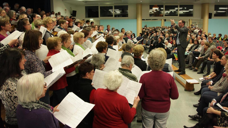 Einen riesigen gemischten Chor hatte Gerald Fink (auf der Bank stehend) beim Landkreissingen zu dirigieren.