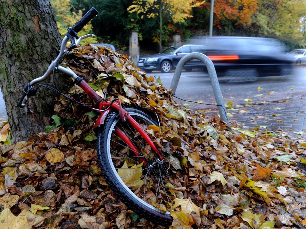 Ein Fahrrad ist am Sonntag (31.10.2010) in Hamburg am Straßenrad unter Laub vergraben. Mit Regen verabschiedet sich im Norden der Oktober. Foto: Maurizio Gambarini dpa/lno +++(c) dpa - Bildfunk+++ | Verwendung weltweit