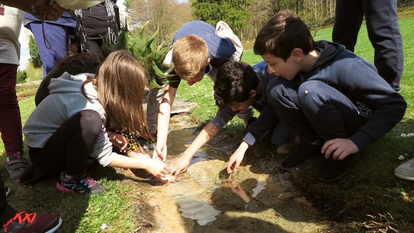 Gelbbauchunken- und Erasmus-Projekt Grundschule Treuchtlingen, Nagelberg, Kriegsgräberstätte 17.04.2018 Patrick Shaw