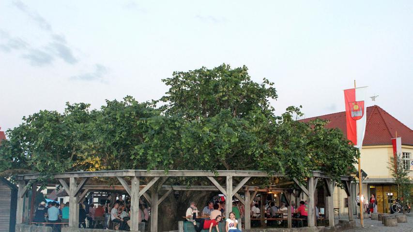 Die Tanzlinde in Effeltrich diente jahrhundertelang als zentraler Versammlungs- und Gerichtsort, im 19. und 20. Jahrhundert auch als Fest- und Tanzplatz. Auffällig an ihr ist die flach gestaltete Krone - sie geht auf die Bastgewinnung für die Obstbaumzucht zurück. Die Linde gilt als eine der schönsten in der fränkischen Region.