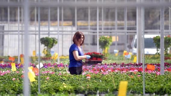 Gartenbetriebe helfen bei Integration und Resozialisierung