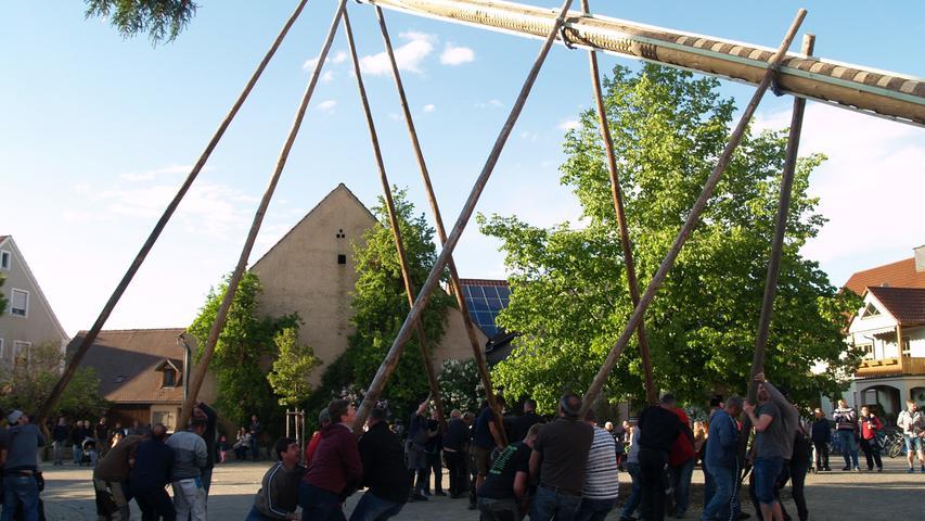 Der Maibaum in Westheim verlangte den Aufstellern einige Anstrengungen ab.