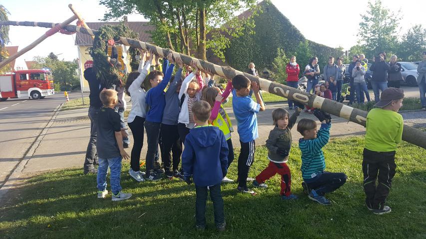Beim Kindermaibaum in Dornhausen konnten auch die Jüngsten beim Aufstellen mit anpacken.