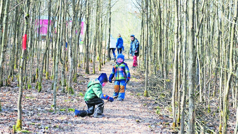 In und von der Natur lernen. Das ist das Ziel der Waldkindergärten. Unser Bild stammt aus Heroldsbach. Als Anlaufpunkt für die Kinder, die so lange wie möglich draußen bleiben sollen, dient ein umgebauter Bauwagen (hier rot im Hintergrund).