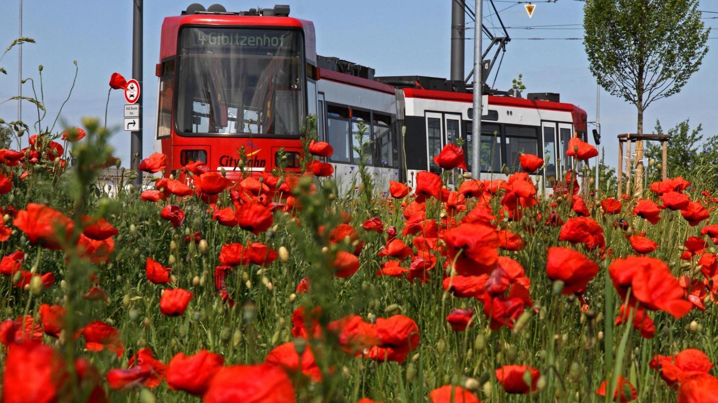 Neue Straßenbahnstrecken wie die nach Am Wegfeld kosten viel Geld. Ein kostenloser Nahverkehr würde solche Investitionen noch schwieriger machen