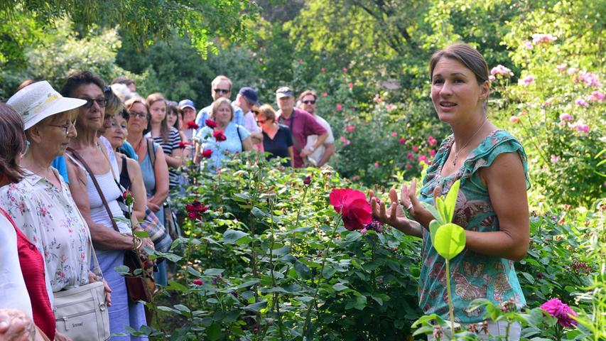 Kräuter, Kokons und Keyboard: Das war das Aromagartenfest der FAU