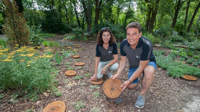 Standesamtsleiterin Heidi Petri und Friedhofsmeister Bernhard Griesmann auf dem neuen Urnenfeld. 100 Baumscheiben markieren, wo zukünftige Bestattungen erfolgen sollen.