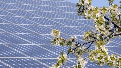 Die Solarenergie blüht in Fürth weiterhin auf.