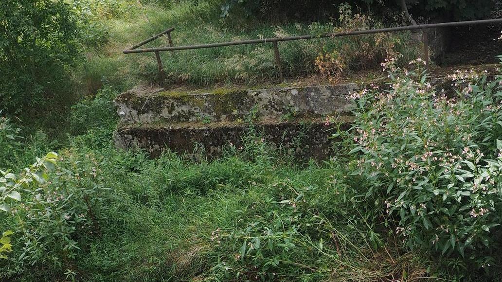 Der Düker an der Schlossstraße von oben: Auf Grund eines Lecks tritt das Wasser des Mühlbachs in die Pegnitz aus.