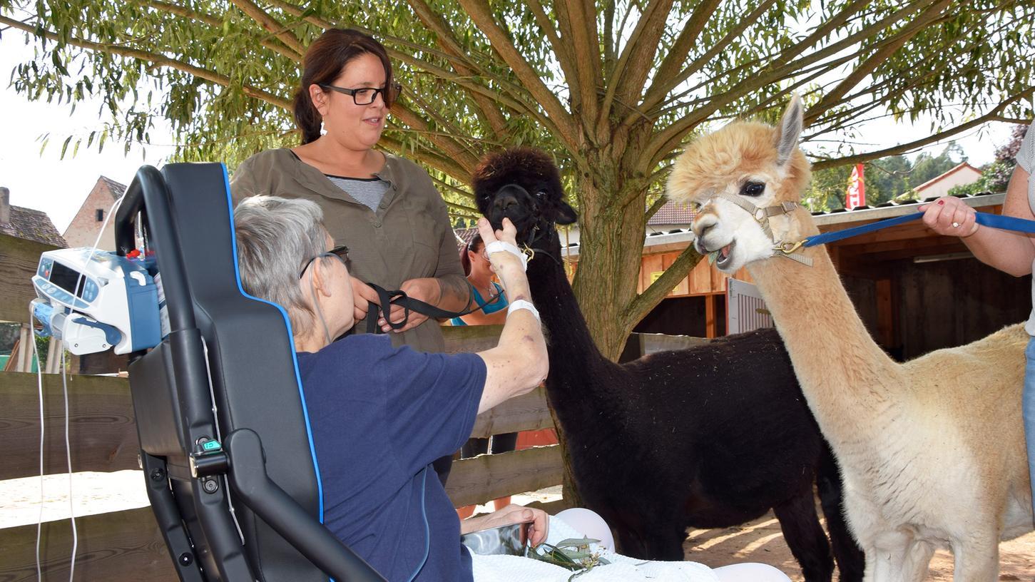 Vor seiner Erkrankung verbrachte der 55-Jährige sehr viel Zeit mit den Alpakas